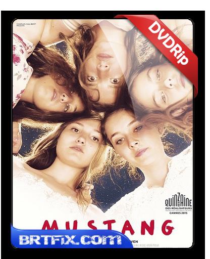 Mustang 2015 Türkçe Dublaj İndir