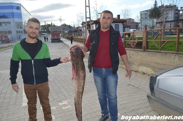 boyabat yayın balık3