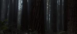 Pete ve Ejderhası 2016 1080p Full HD Türkçe Dublaj İndir (8)