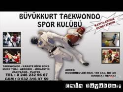 emin büyükkurt taekwondo Isparta (14)