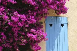 çiçekli kapı girişler (2)